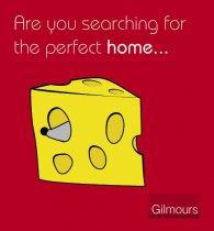 776956c32760b7d67e97670b6dad7143/1541065336_ctn001_cheese.jpg